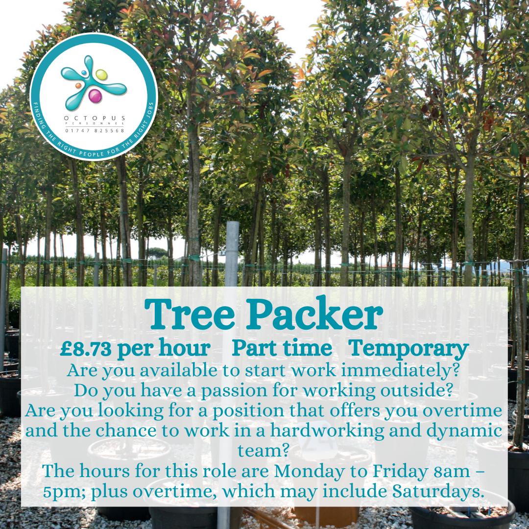 Nursery of Trees - Tree Packer Square Octopus Personnel Job Advert